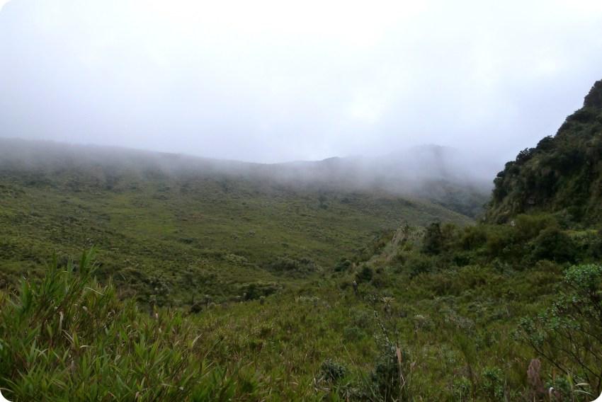 paysage brumeux du paramo au parc naturel puracé