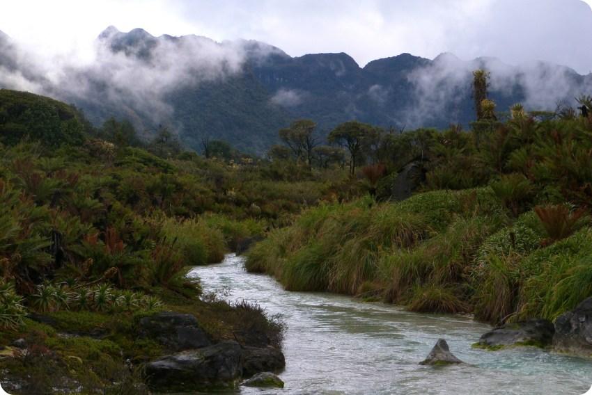 los termales nebulosos de san juan en el parque natural Puracé