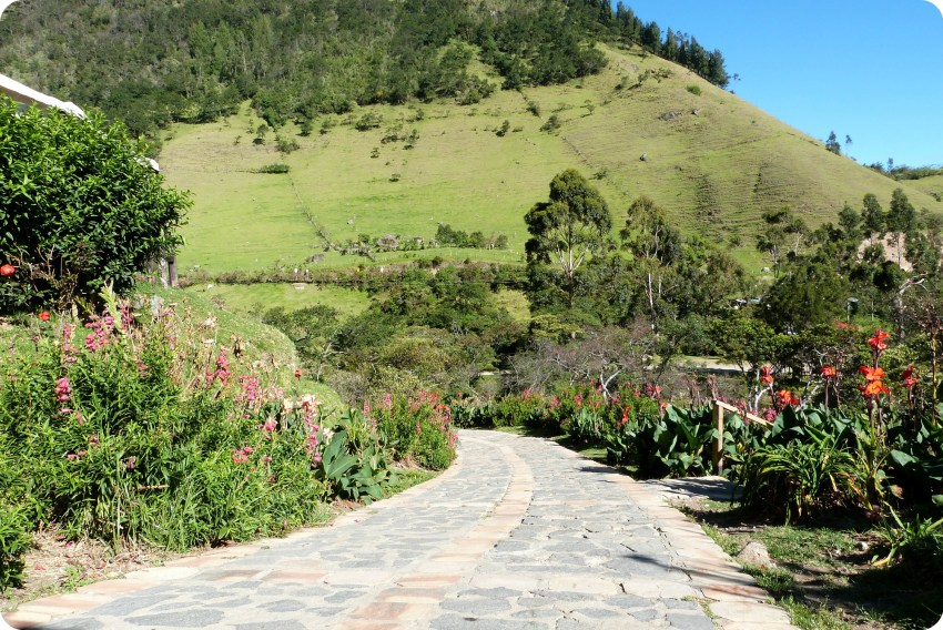 camino en Aguas Tibias de Coconuco