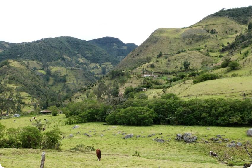 paisaje guambiano con montañas y un caballo en un campo en silvia