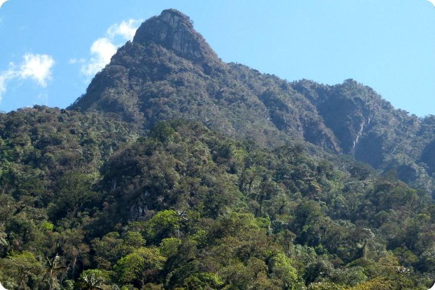pic de la montagne dans la vallée de Cocora