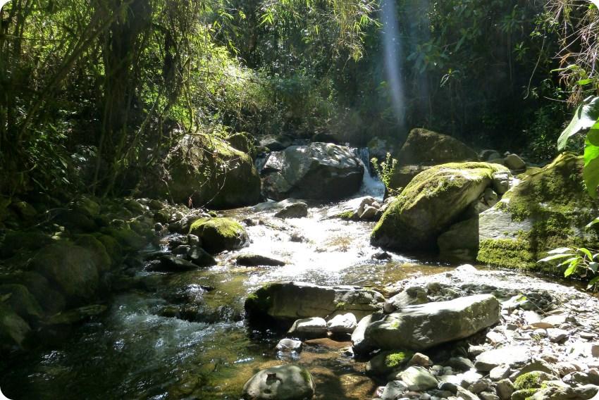 piedras del río Quindío en el valle de Cocora