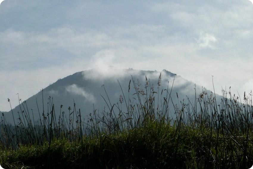 graminées et montagne à la lagune de la Cocha à Pasto