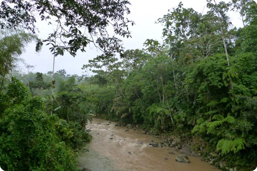 Río de los Tsachila en Santo Domingo de los Colorados