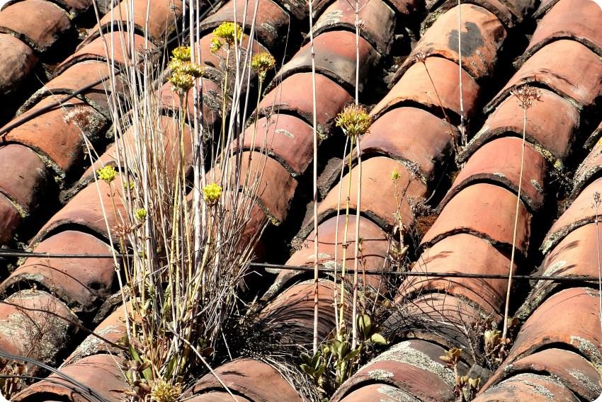 techo en ladrillo de una casa del barrio de la Candelaria de Bogotá