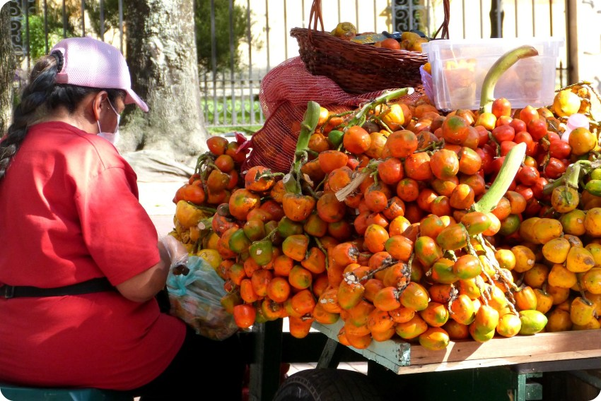 charriot de chontaduros vendus dans une rue de Bogotá