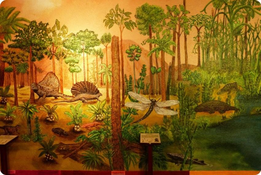 Forêt représentée au Museo de Historia natural de Quito