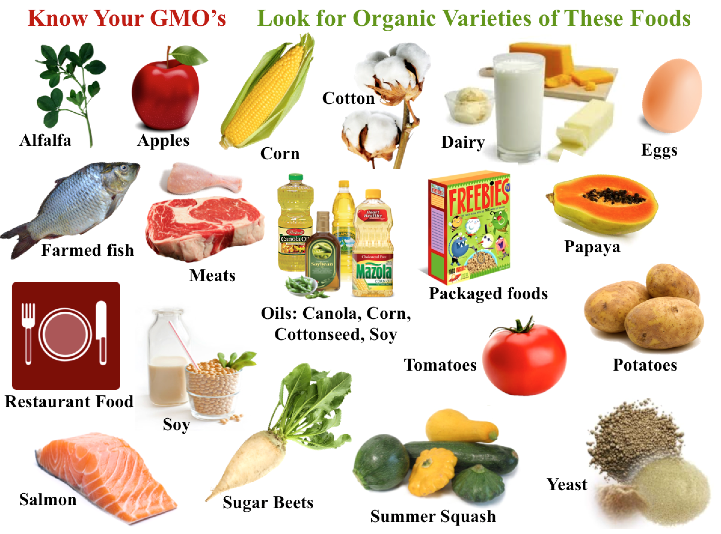 How To Identify Genetically Modified Food In The Shops And
