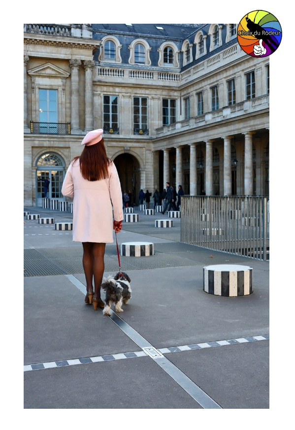 2016, forum, Instinct-Photo, photo, rôdeur, sélection, Babclaude, Paris, colonne, Buren, palais, royal