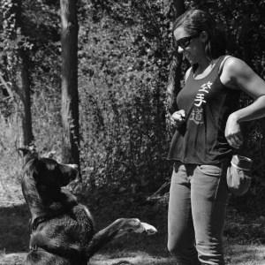 Instinct de Chien - Education, rééducation canine à domicile en Drôme Ardèche - Comportementaliste sur Montélimar et Aubenas - Cours collectif en ville atelier canin
