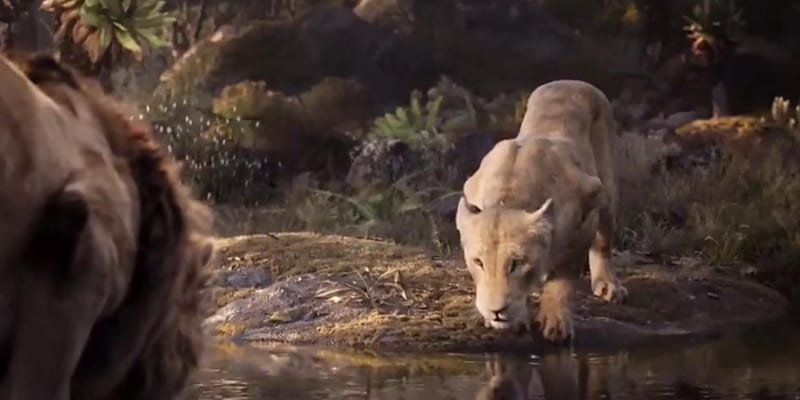 We get this glimpse of Beyoncé as 'Nala' (screen capture)