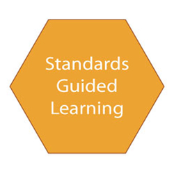 Cell-standards-guided-learning