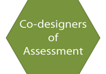Co-designers of Assessment Element