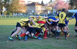 rugby 2019 3
