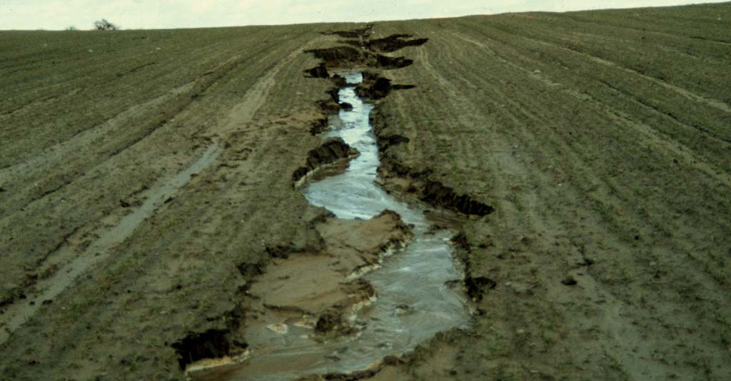 Erosão do solo: causas, consequências e como evitar