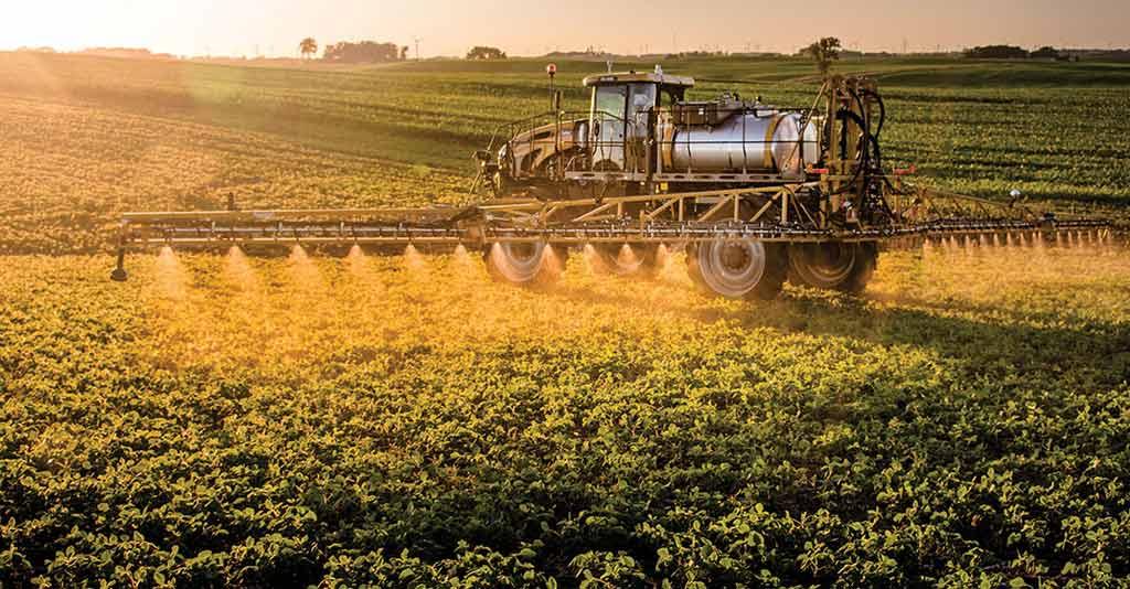 Uso correto de fungicidas no manejo de doenças de plantas