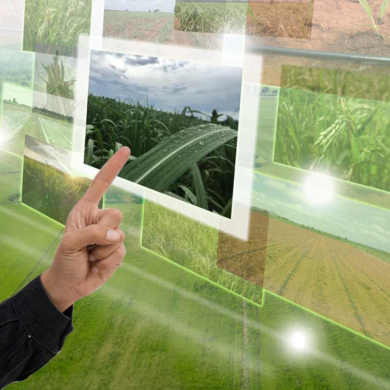 Sensoriamento remoto aplicado ao manejo do solo