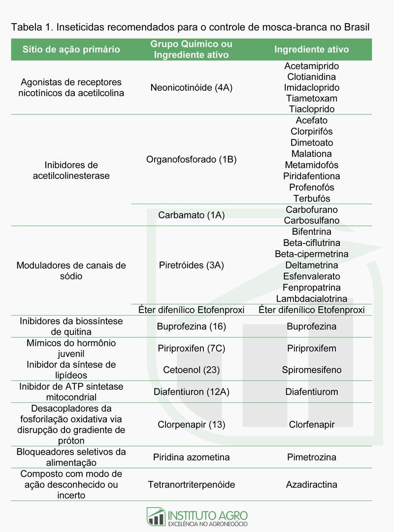 Mosca-branca: ciclo de vida, doenças transmitidas e estratégias de manejo