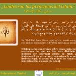 TAUHID 10 Qué significa el Islam Cuáles son los principios del Islam ما هي أركان الإسلام ما هو الإس