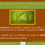 TAUHID 11 Qué significan los dos testimonios de fe وما معنى الشهادتان