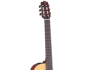 Yamaha APX700