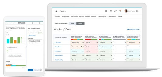 brightspace mastery view
