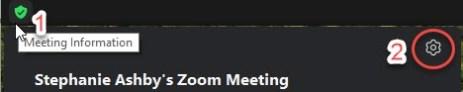 zoom in meeting settings