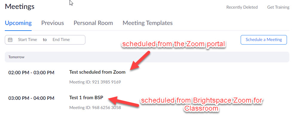 zoom all meeting list