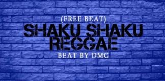 Naija shaku shaku reggae instrumental beat