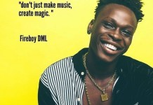 Fireboy DML – King Instrumental