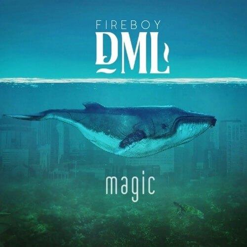 Fireboy DML Magic Instrumental