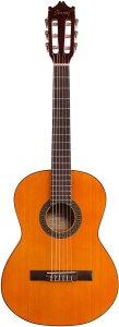 Ibanez 6 String Classical Guitar, Right, Natural