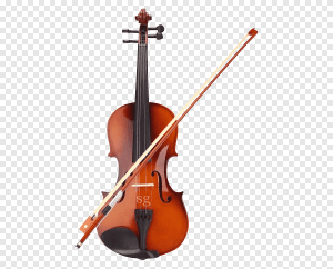 best violin bows for advanced students