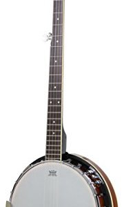 Jameson Guitars 5-String Banjo 24 Bracket with Closed Solid Back
