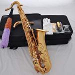 FidgetFidget Professional Gold brass C Melody sax saxophone high F# with 2 Necks +case