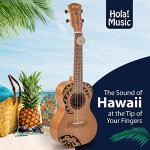 Hola! Music HM-124TT+ Laser Engraved Mahogany Concert Ukulele Bundle with Aquila Strings, Padded Gig Bag, Strap and Picks – Tribal Tattoo 2