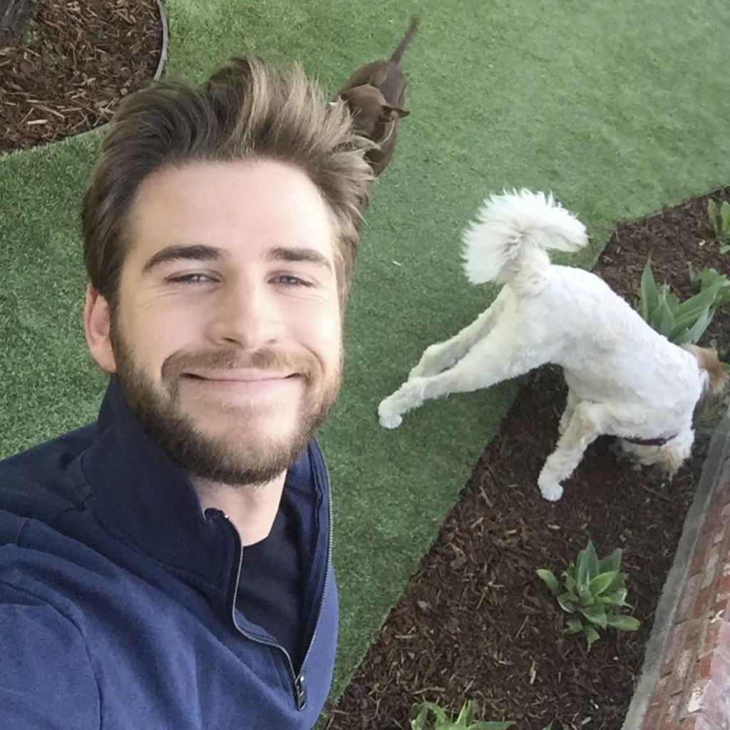 Esta foto de Liam Hemsworth y su cachorro mejorará tu lunes (sí o sí)