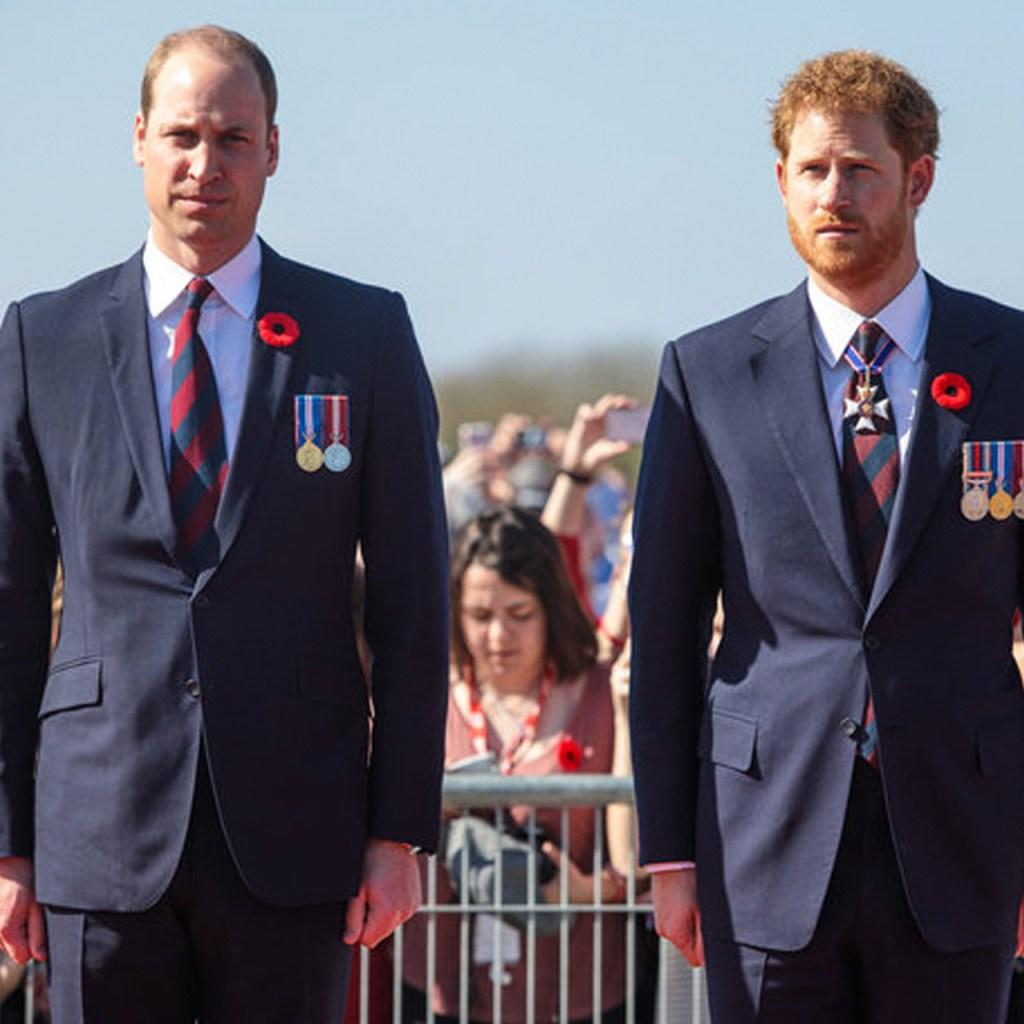 William y Harry rinden homenaje a Diana con una nueva carta