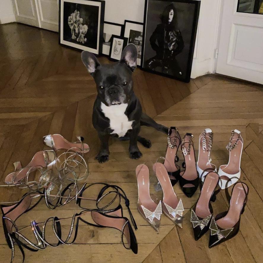 La marca de zapatos que Kendall, Rihanna, Hailey y otras celebs aman
