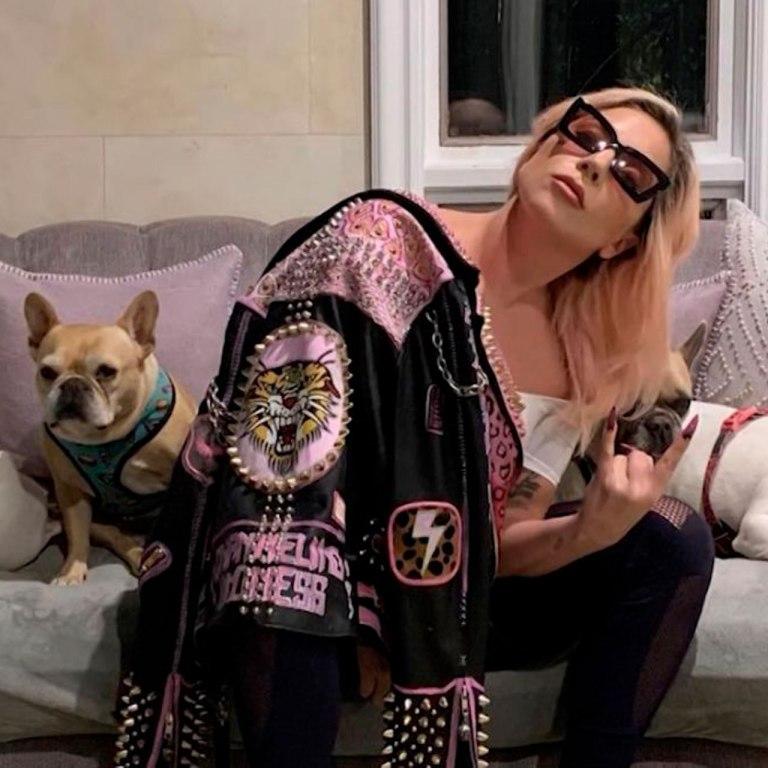 El paseador de los perritos de Lady Gaga ya habló sobre el robo