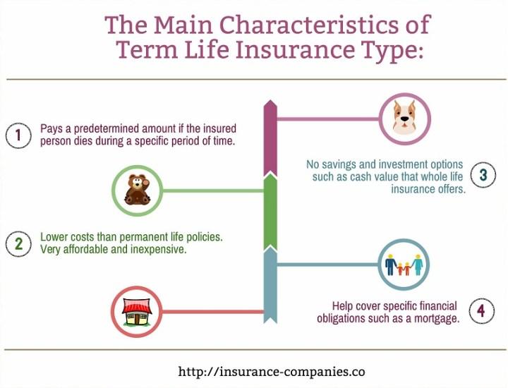 Term Life Insurance Characteristics