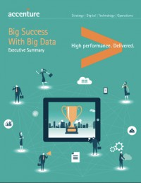 Big Success with Big Data: Executive Summary