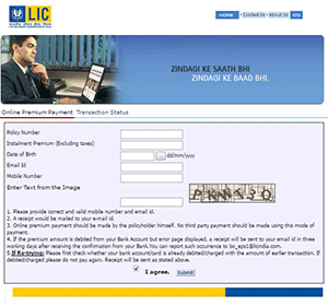 Paly LIc premium online and offline