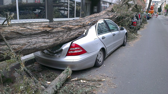 Will Auto Insurance Cover Weather-Related Accidents?