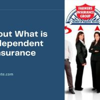 all about What is an Independent Car Insurance Agent