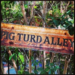 The last sign of Pig Turd Alley, all the rest have been stolen.