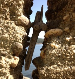 Driftwood cross stuck in North Fork Ditch water canal