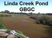 Linda Creek Pond at the Granite Bay Golf Course