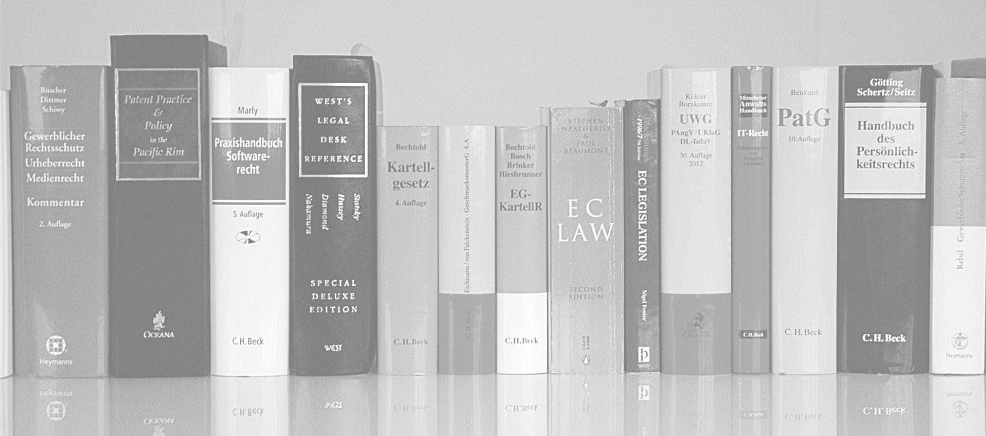 Rechtliche Themen