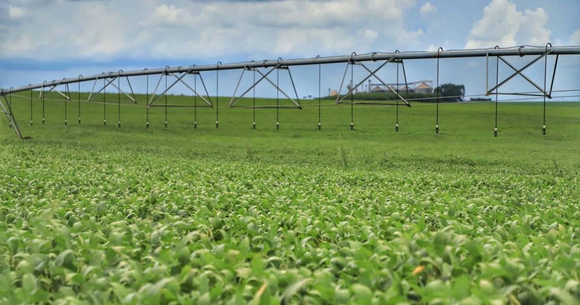 Novo calendário de plantio de soja para a safra 2021/22